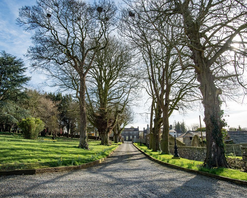 Discreetly tucked away behind the centrally located Village Garden and recreation area in Slane, Boyne House Slane is set in its own grounds, comprising a small patch of woodland with well aged Copperbeech, Poplar and Chestnut trees.